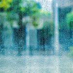 梅雨時の体調管理