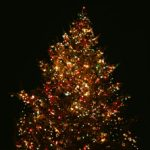 【Vol.40】心あったかクリスマス
