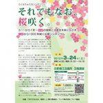【Vol.55】「それでもなお、桜咲く。」