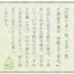 【Vol.102】ズレのない生き方
